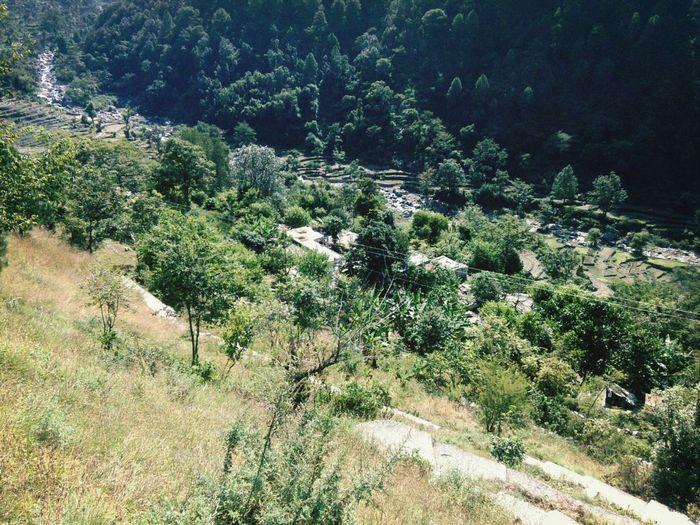 my village......