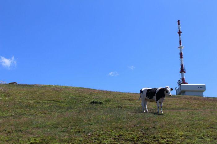 Kärnten Mountains Goldeck