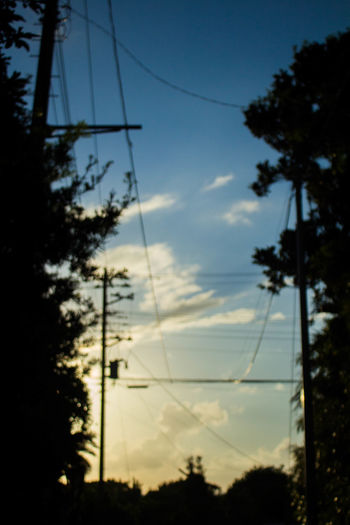 Beauty In Nature Cable Cloud - Sky Day Electricity Pylon Eye4photography  EyeEm Best Shots EyeEm Nature Lover Hachijo-island Low Angle View Nature No People OpenEdit Outdoors Power Line  Shadow Silhouette Sky Sky And Clouds Sunset Sunset_collection Tranquility Tree Vertical