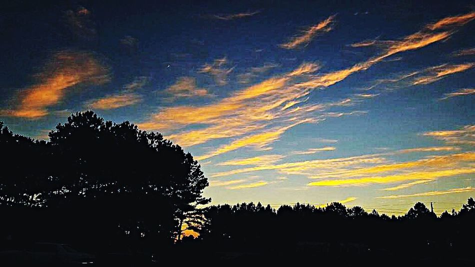 Alabama Sunset Tonight June 2016 Summer Nights Paintbrush Sky Looks Like A Painting Added A Filter, Can Not Believe The Effect. Life Home My Unique Style Skyporn Clouds And Sky Setting Sun Trees Dark Skyline Wonderful Moment From My Point Of View Appreciating The Small Things Temperature Is Finally Cooling Down! Nature Photography Evening Walk EyeEm Nature Lover The Great Outdoors Happiness Is Everywhere