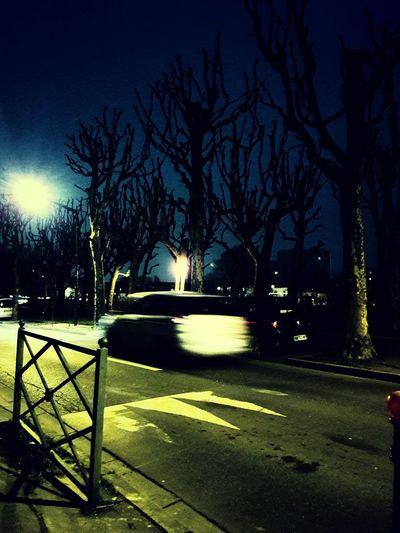 Night Tree Outdoors Bare Tree No People Shadow Sky