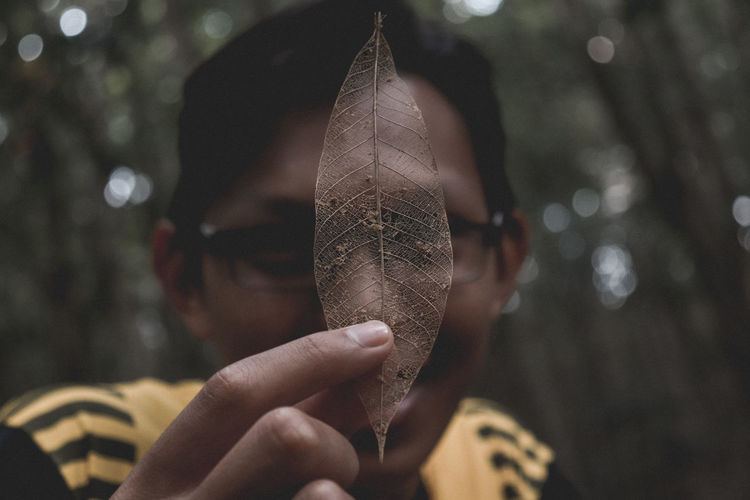 Close-up of hand holding leaf skeleton
