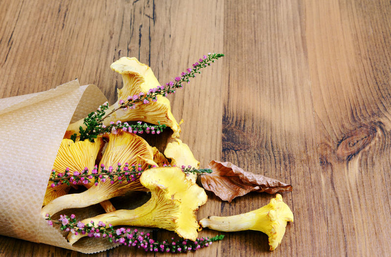 Golden chanterelle and flower on wooden table