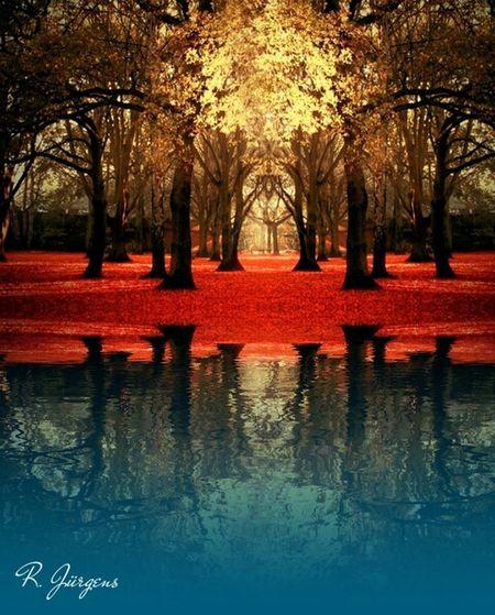 Reflection Water_collection Landscape_Collection EyeEm Best Shots - Landscape