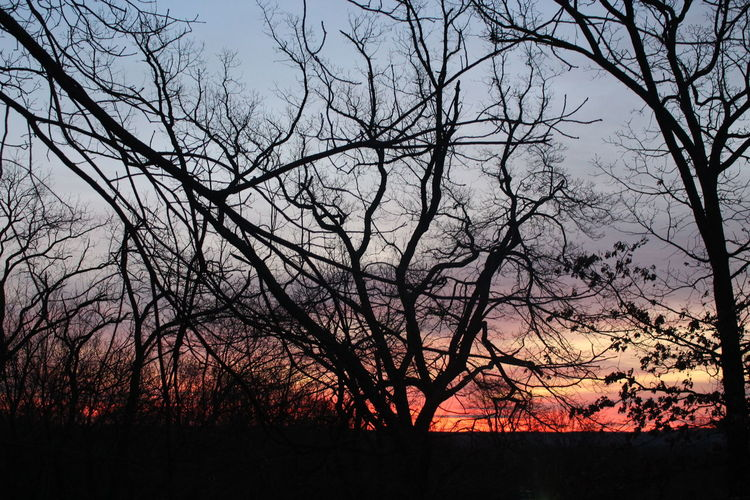 Sunrise_Collection OklahomaSkies Oklahoma Sunrise Eye4photography  EyeEm Nature Lover Oklahomaphotography Oklahoma Nature Oklahoma Eye4photography  EyeEmBestPics Sky Tranquility Scenics - Nature Beauty In Nature No People Canon Canonphotography