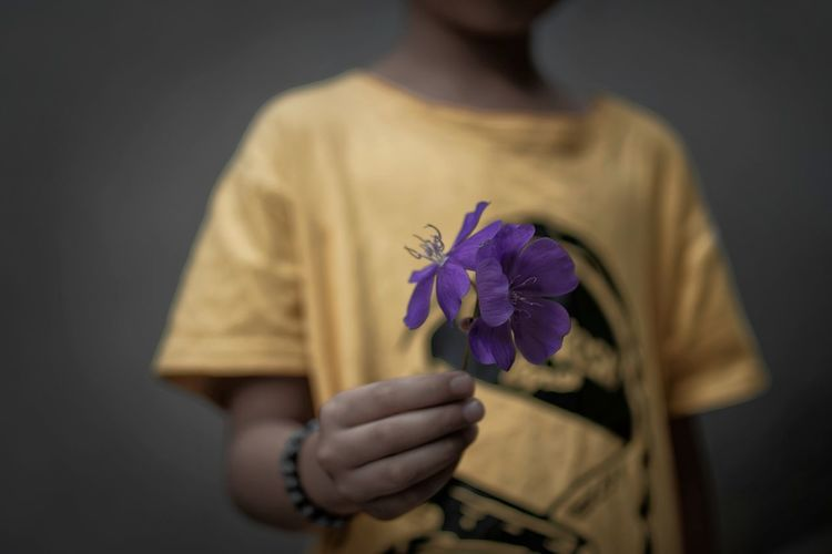 Learn to edit Holding Flower One Person Freshness Flowering Plant Plant Fragility Beauty In Nature Midsection Nature Vulnerability  Close-up Indoors  Focus On Foreground Studio Shot Casual Clothing Front View Yellow Human Hand Flower Head Purple Bandung Shooter Indonesian Shooter
