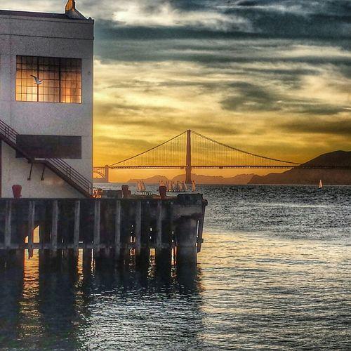 My Unique Style Golden Gate Bridge Fort Mason San Francisco
