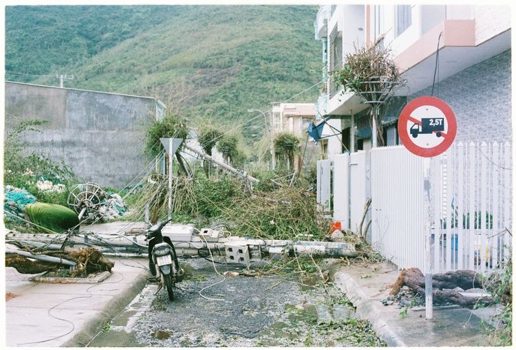 Street in Nha Trang after the landfall of typhoon Damrey Analogue Photography Ishootfilm Mother Nature Nha Trang Nikon Nikon FE Typhoon Viet Nam Architecture Building Exterior Built Structure Cvs400 Day Documentary Film Photography Filmcamera Nature No People Outdoors Streetphotography Tree Water