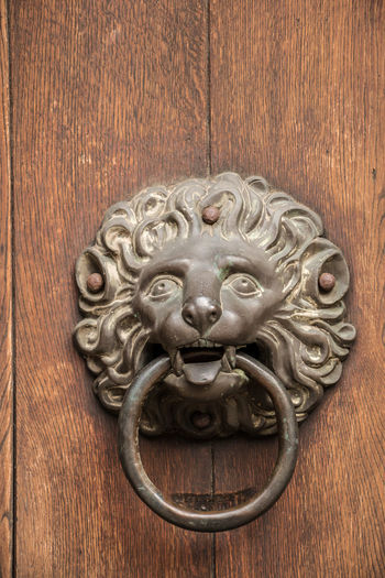 Door knob of an old historical building in shape of a lion made of iron Door Door Knocker Entrance Wood - Material Metal Art And Craft Lion - Feline Close-up Cat Animal Representation Representation No People Feline Animal Wildlife Animal Craft Animal Themes Antique Day Ornate Animal Head