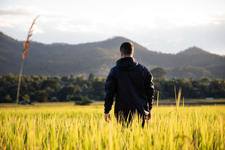 Rear view of man standing at rice paddy against mountains