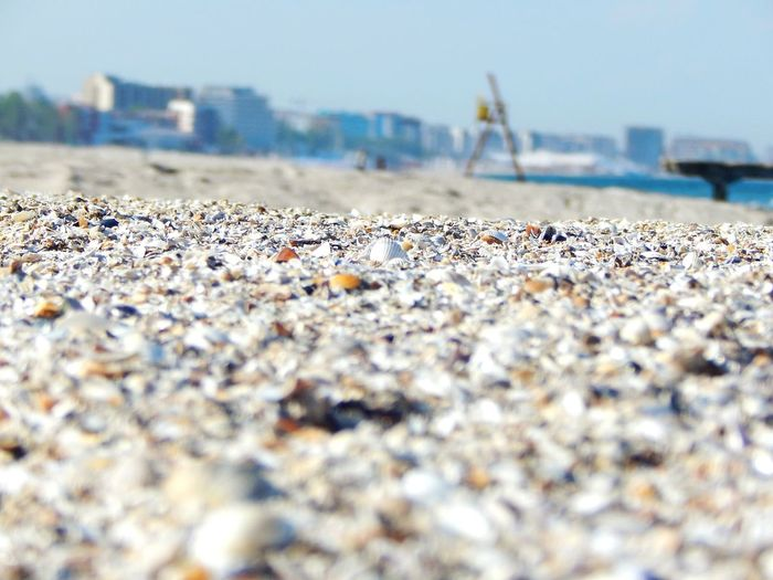 Taking Photos Relaxing Simple Photography Shells Sunny Popular Photos No People Mamaia Beach Ground Beach waiting for the summer Surface Level