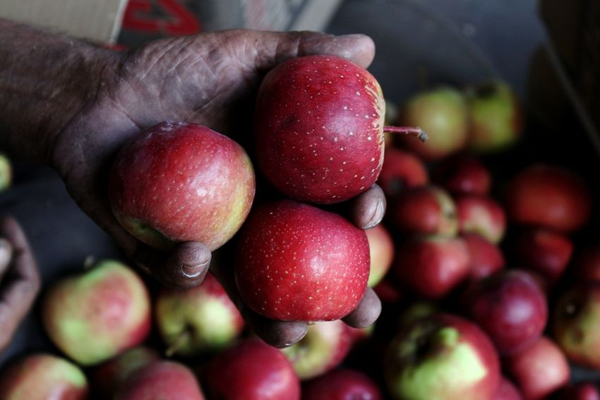 Apples Healthy Eating Food And Drink Food Red Freshness Fruit Close-up Agriculture Market No People Indoors  Healthy Lifestyle Dieting Vegetarian Food Sweet Food Day Supermarket Indian Culture  India Farming Farming Equipment Farm Life