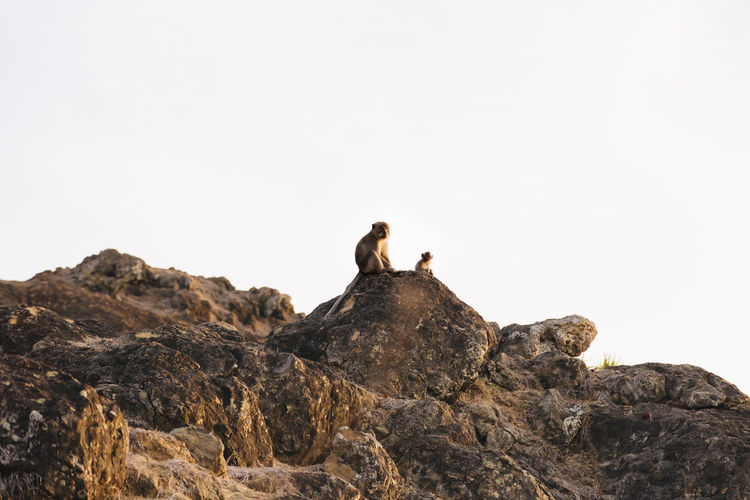 Low angle view of people sitting on rock against clear sky