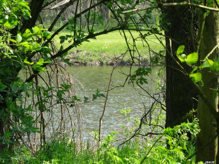 Nature Nature_collection EyeEm Nature Lover EyeEm Best Shots