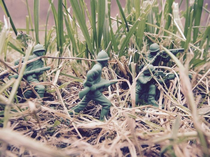 My first trial shoot with my toy soldiers Field Day Nature Outdoors Grass Close-up Toy Photography Toy Soldiers Toy Soldier Macro Macro Photography Green Color Green EyeEmNewHere