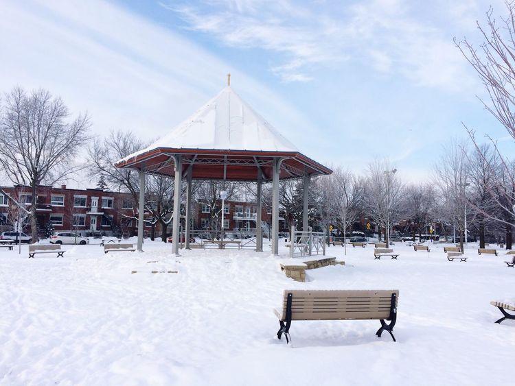 Hiver Neige❄ Parc Montréal