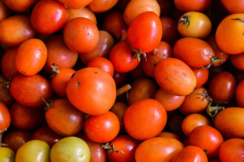 Cherry Tomatoes Fruit Healthy Eating Food Textures And Patterns Texture In Nature Pattern, Texture, Shape And Form Red Food And Drink Freshness No People Close-up Full Frame Backgrounds Day Nature Outdoors Food Photography Light And Shadows Fresh Produce Agriculture Harvest Abundance