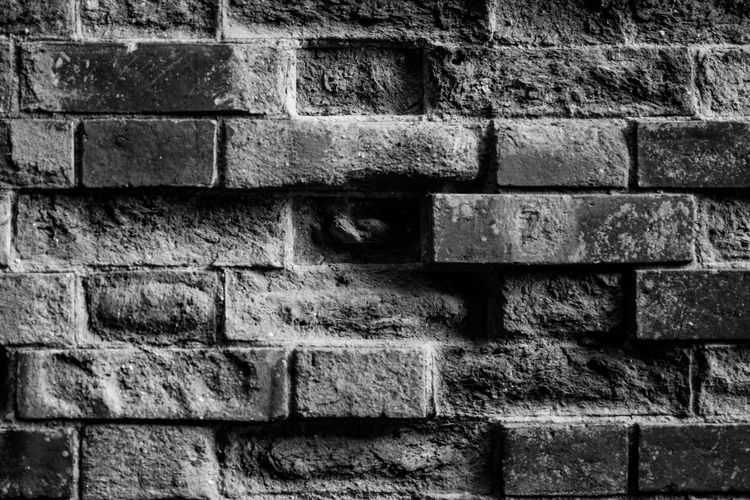The Wall Flemish Bond Architecture Backgrounds Brick Brick Wall Building Exterior Built Structure Close-up Day No People Outdoors Textured  Wall - Building Feature