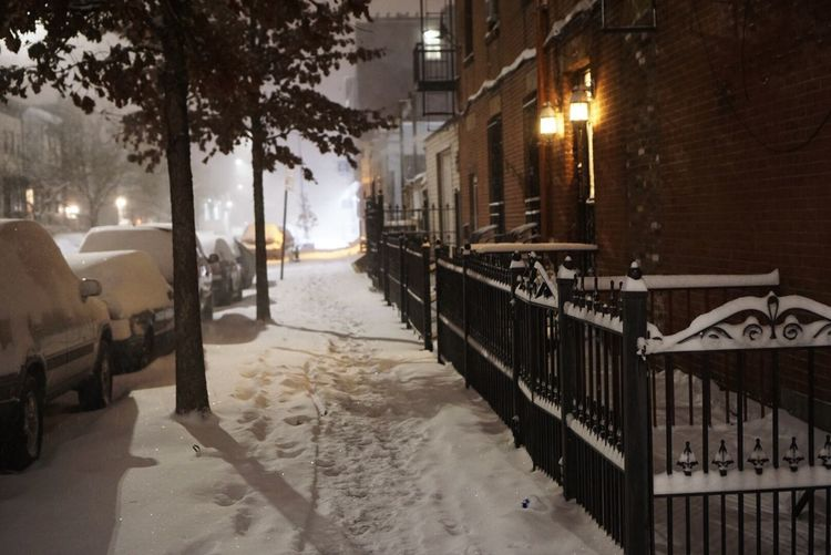 Snow in the city Car Illuminated Wet Street Transportation City Building Exterior Tree Built Structure Mode Of Transport Architecture Land Vehicle Cobblestone Snowing Snow Night Winter No People Cold Temperature Outdoors New York Brooklyn Brownstone Snow ❄ Snow Day