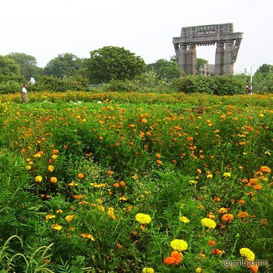 Flowers Kakatiya Thoranam Fort Warangal Telangana