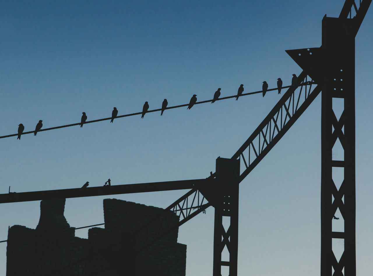 sky, low angle view, architecture, clear sky, built structure, metal, no people, nature, day, blue, silhouette, bird, fence, outdoors, copy space, vertebrate, animal, animal themes, barrier, connection