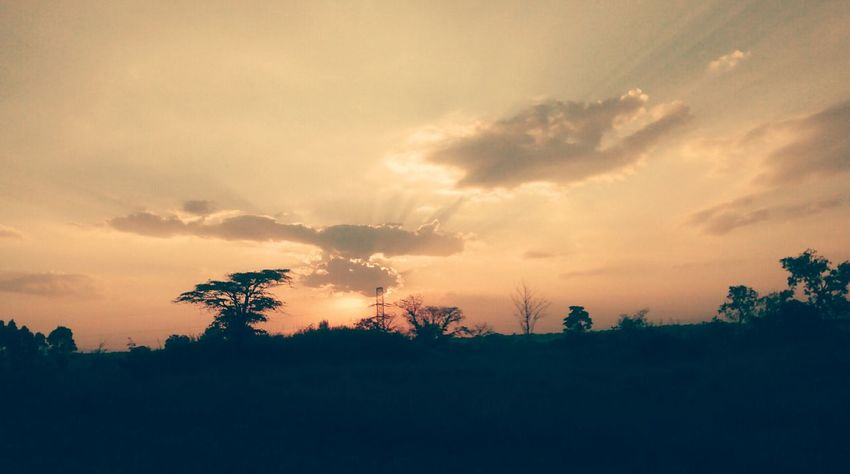 EyeEmBrasil Nature Sunset