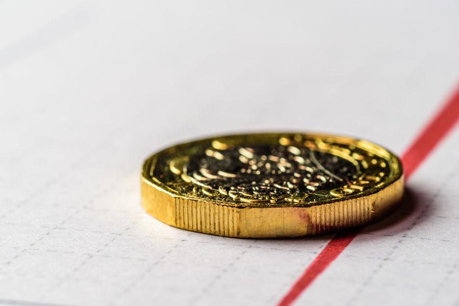 British New One Pound Coin Chart British British Columbia Closeup Exchange Fall Golden Leaf Level Lifestyles Money Nature One Person Pound Rat Saving Sterling