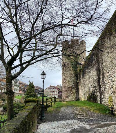 Monument Historique Csstel Château Musée Suisse Du Jeux La Tour De Peilz Vaud Suisse  Tree Plant Architecture Nature Built Structure Sky The Way Forward