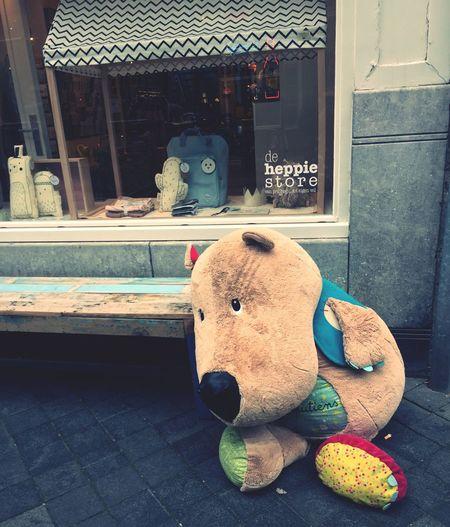 Big Teddy Bear  Lost Teddy Lost Teddy Bear Lonely Teddy Bear 🐻 In Maastricht Teddybär Maastricht Maastricht Holland Maastricht,NL Teddybären Stofftier Sweet Bear Süss Bisounours
