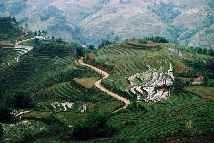 High up in the Sapa Mountains. Landscapes With WhiteWall Green Landscape Mountains Vietnam Sapa Winding Road Road Travelling Outdoors