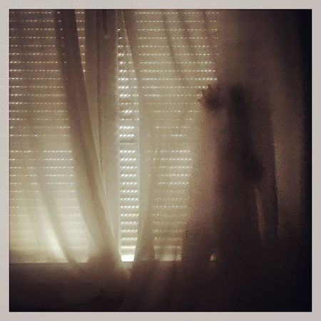 Drapes  Indoors  Shadow Window Real People Day Close-up One Person Light And Shadow Taking Photos IPhoneography Playing Childhood Child Hide Hide And Seek Hidden