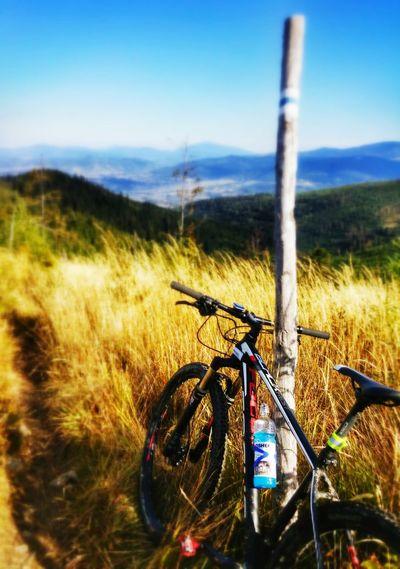 Focus MTB Focus Mtb Bike Ride Beskidżywiecki LGG3 LGg3photography Lgg3shot MTB Biking 29er 29ers
