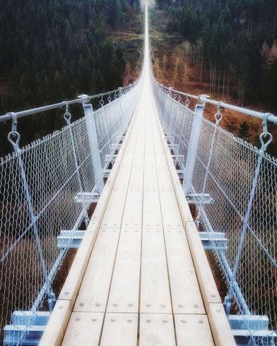Geierlay Germany Deutschland Outdoors Bridge EyeEm Selects
