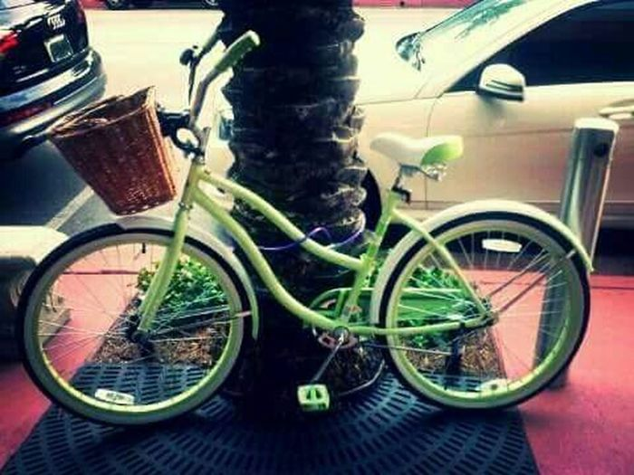 Bicicleta Bicycle