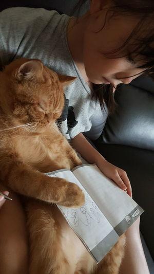 Reading 翻轉視界 猫 Wish 喵星人 Catboy 研小希的童趣世界
