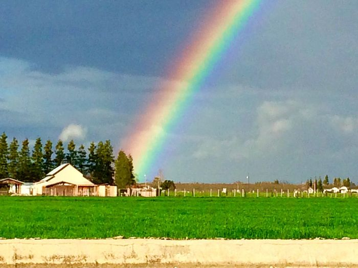 Rainbow Beauty In Nature Scenics Sky Building Exterior Farm Barn Agriculture Agriculture Photography Agricultural Land Idyllic Tree Architecture Tranquil Scene Nature No People Outdoors Cloud - Sky Double Rainbow Grass Landscape Field Tranquility Day f Amazing Rainbow