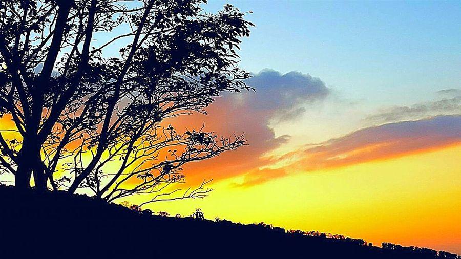Dawn on the