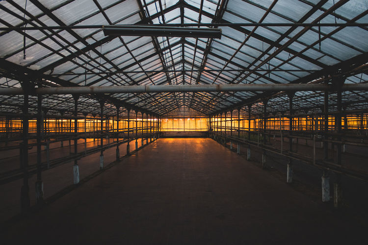 Architecture Built Structure Greenhouse Illuminated Indoors  Light Light And Shadow No People Plant Nursery Shadow Warm Colors Warm Light Warmth