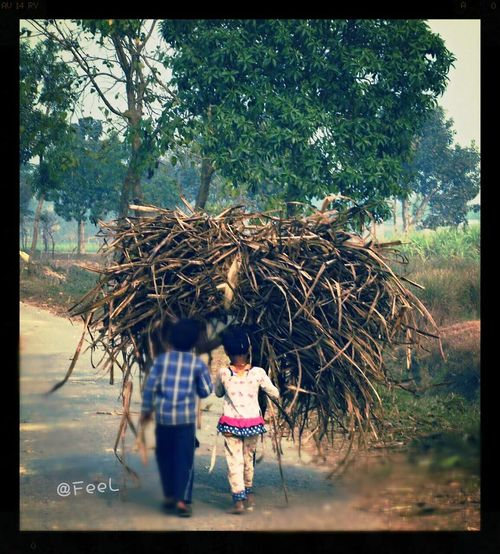 In this pic..... I don't know why I clicked this....? Think about their dreams..... FeelPhotography @akhil Check This Out Taking Photos