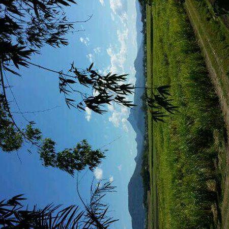 Mount Warning near Murwillumbah Hi!