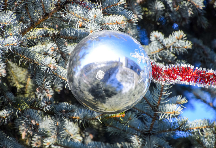 Tinsel and toys, balls and other decorations on the Christmas Christmas tree standing in the open air. Decorations New Year tree. Christmas Garland Holiday New Year Pine Santa Toys Tree Balls Decorations Needles Open Air Sky Spruce Tinsel