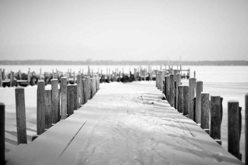 Beach Beauty In Nature Close-up Day Group Of Objects In A Row Nature No People Outdoors Sea Sky Tranquil Scene Tranquility Water Winter Wood - Material Wooden Post