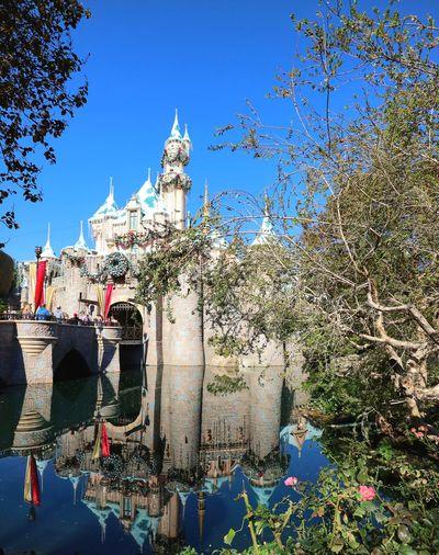 Disneyland Disney Slepping Beauty Castle MerryChristmas California