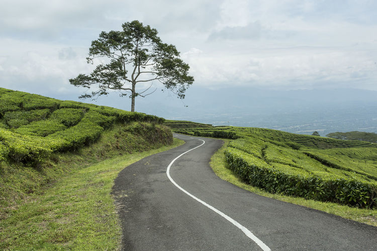 Scenic view of road amidst field against sky
