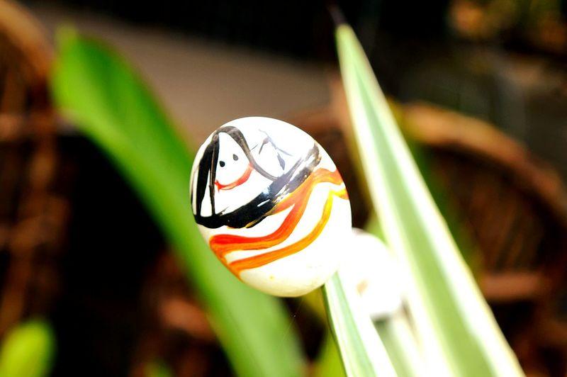 My eggshell art.... Notsogood😝 Showcase: November Learn & Shoot: Simplicity