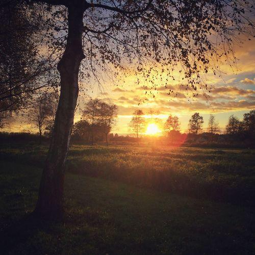 Sunset in Autumn