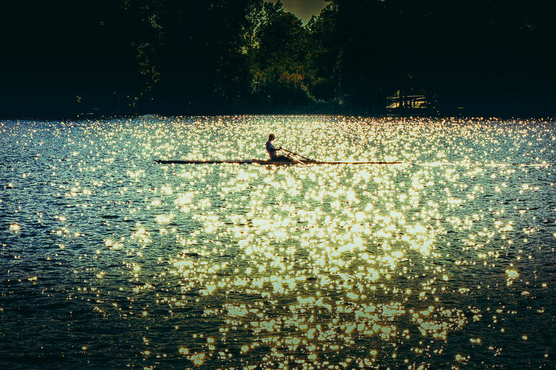 Lonely rower on Maschsee in evening sun Water Nature Waterfront Real People Sunlight One Person Nautical Vessel Beauty In Nature Plant Lifestyles Day Tree Men Tranquility Leisure Activity Outdoors Tranquil Scene Rower Rowing Maschsee Sport Sportsman Lake Evening Sun Sun Reflection On Water
