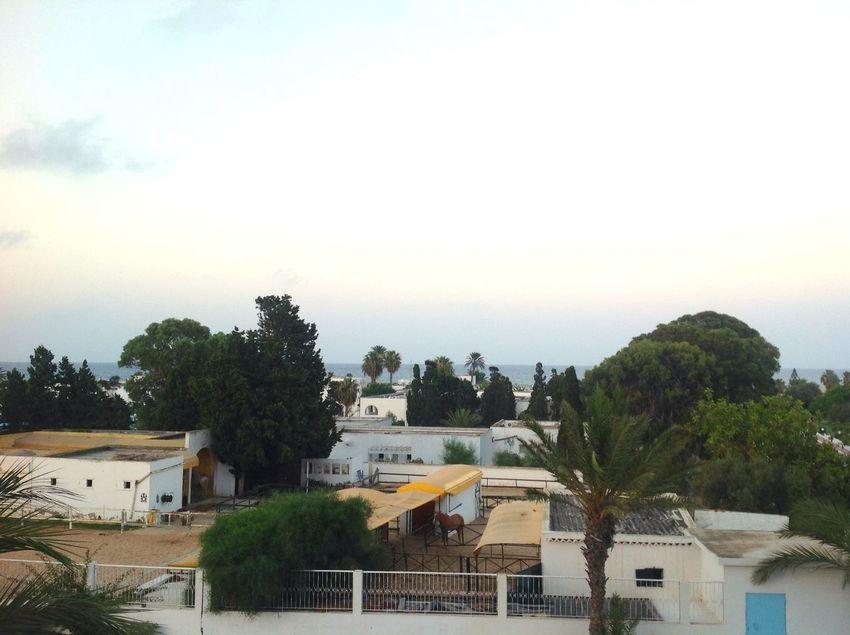 Mahdia/Tunisia