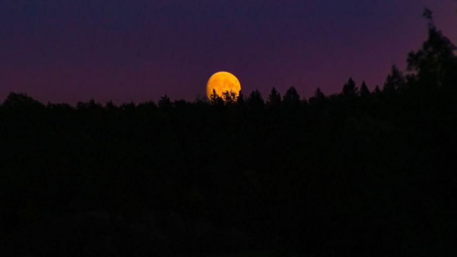 Full moon Sky