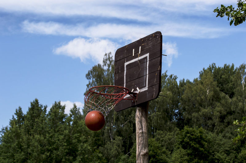 Basketball Basketball Board Ball Basketball - Ball Basketball - Sport Basketball Board Ring Broken Dunk Dunked On Dilapidated Basketball Hoop Cloud - Sky Day Green Color Growth Low Angle View Mid-air Nature No People Outdoors Plant Sky Skyscraper Sport Tree